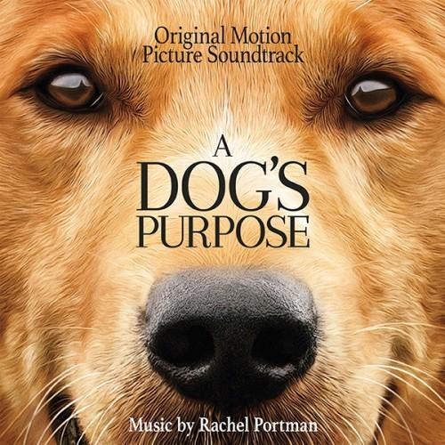 دانلود موسیقی متن فیلم A Dog's Purpose (هدف یک سگ)